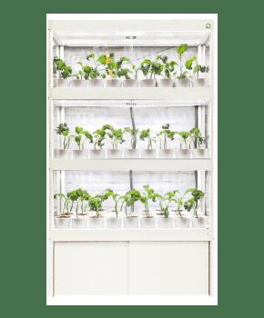 Plantário PRO